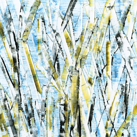 Abstract, birch trees, black, white, yellow and blue