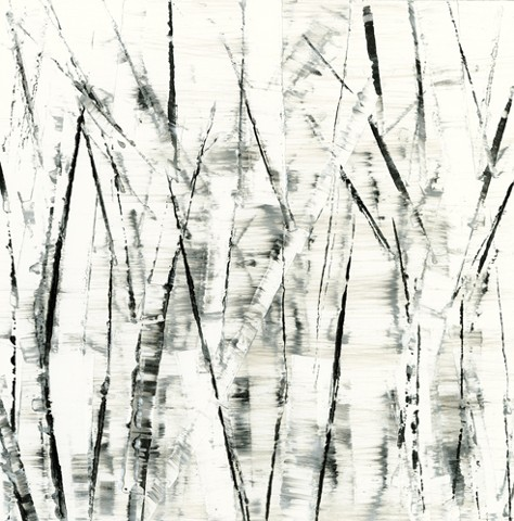Abstract, birch trees, black, white