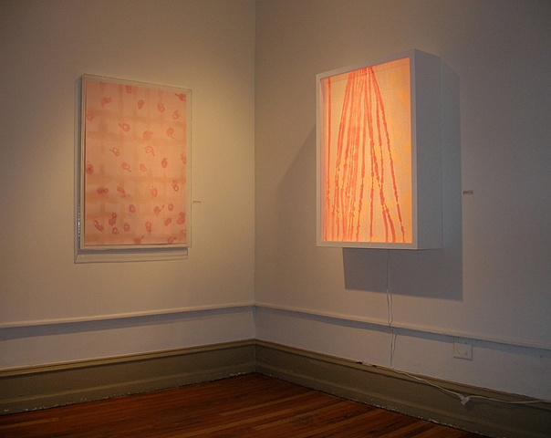 Installation view of Lebanon July 12th  (uxooxu,) and Lebanon July 12 - August 14  ((everything's fine))