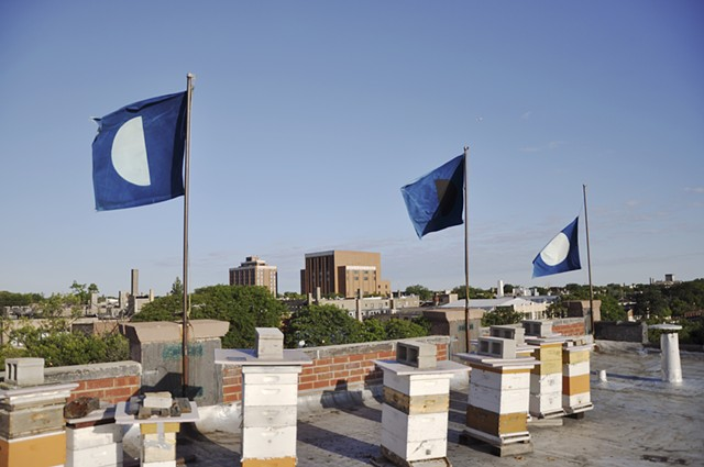 cyanotype flags
