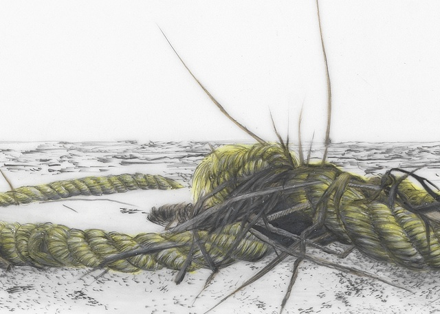 Detail from: Yellow Rope with Seaweed