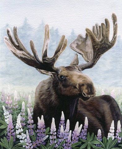 oil painting of a bull moose in a field of lupines