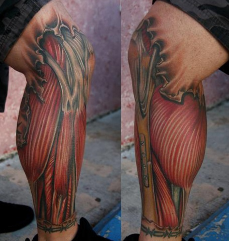 Tattoo of exposed muscle and bones on leg . We tried to keep it anatomically correct as possible.