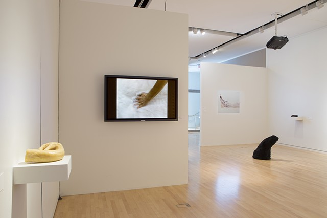 Angela Lopez Installation View at Mary and Leigh Block Museum of Art