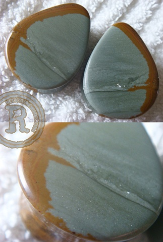 Blue Mustang Picture Jasper