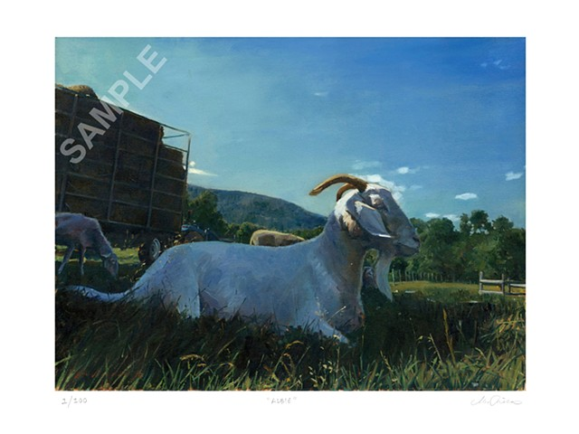 Marcus Pierno Limited Edition Prints, Woodstock Farm Animal Sanctuary