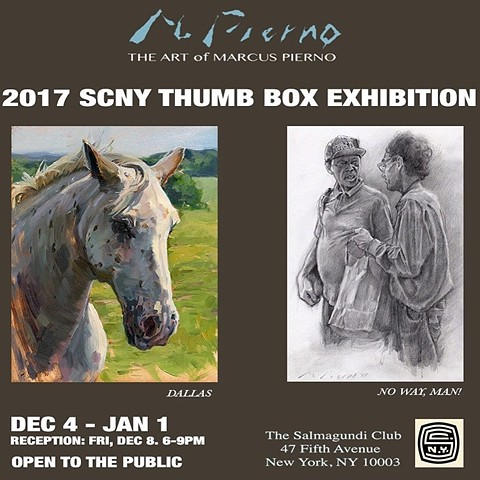 2017 SCNY Thumb Box Exhibition