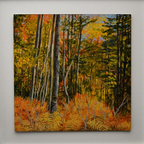 Acrylic landscape painting of ferns and trees in the Atlantic forest showing autumn colors, by Canadian artist, Janet Moore