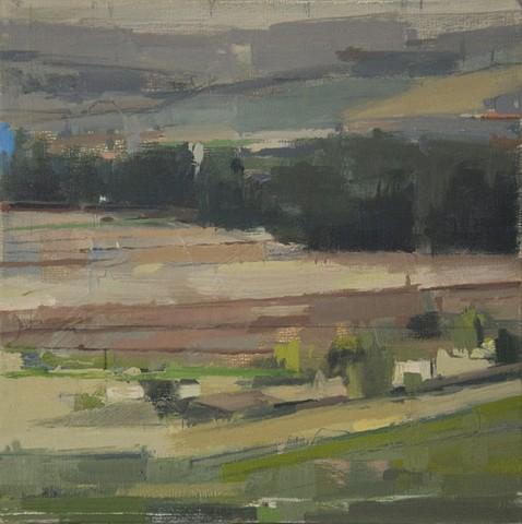 Umbrian Fields