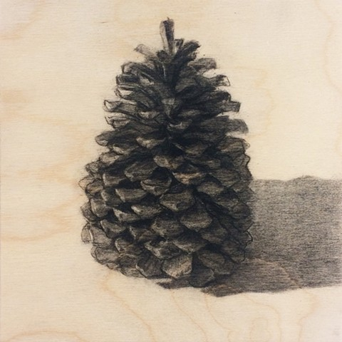Pinecone From Mammoth