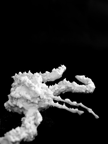 Rena Leinberger photo of Challenger explosion in cake frosting