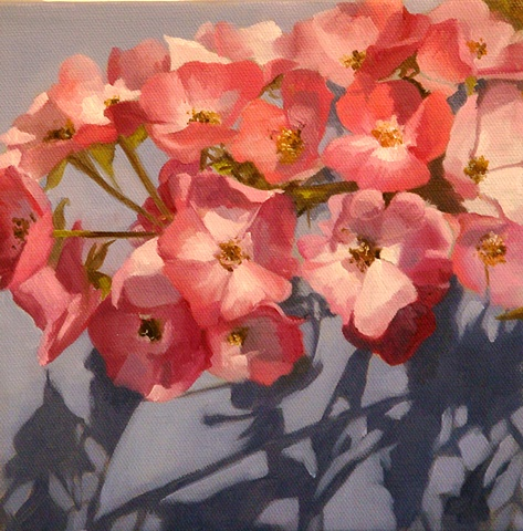 Nova Scotia Blossom