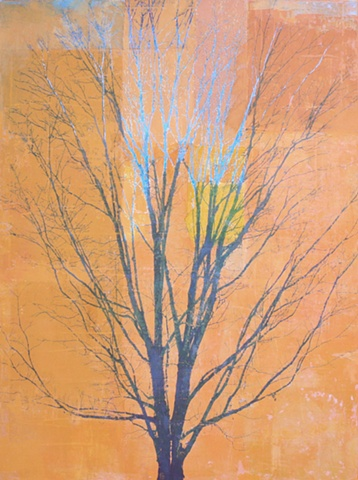 mixed media and oil painting photo transfer trees by North Carolina American painter Richard Garrison