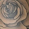 Ink Machine Tattoo  Edmonton AB  Kristines roses