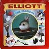 """""""Elliott Banner"""""""