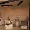 ECU Mini Ceramic Gallery Track Lighting