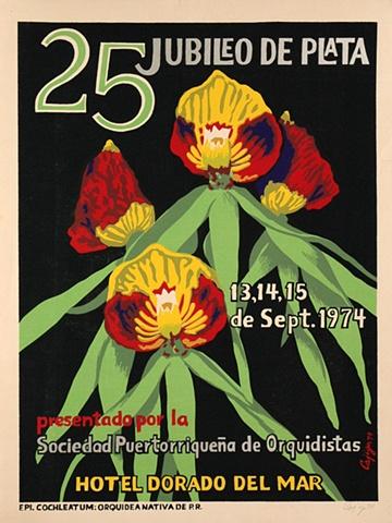 Cajiga, Luis Germán. 251