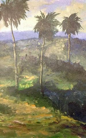 Colón, Rafy. 637