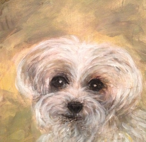 This Precious Petites work of art depicts Luna, a maltipoo dog. Order a custom portrait for your pet today!