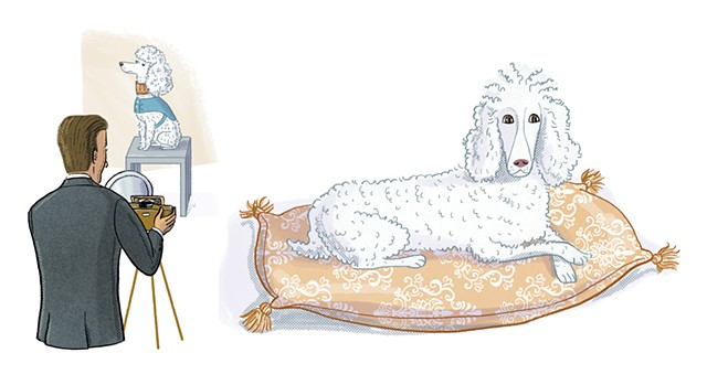 Basket the poodle, Gertrude Stein, Violet Lemay, Artists and Their Pets, kidlit artist, middlegrade artist, children's book illustrator, picture book illustrator