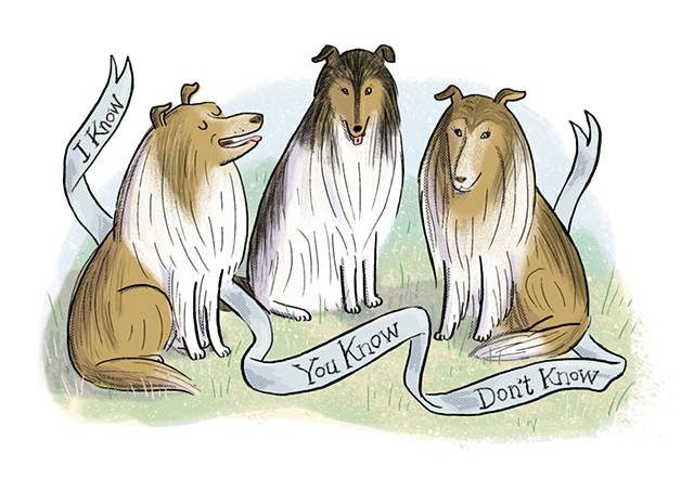 Mark Twain's collies, Violet Lemay, Artists and Their Pets, kidlit artist, middlegrade artist, children's book illustrator, picture book illustrator