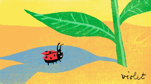 lady bug, cute illustration of ladybug