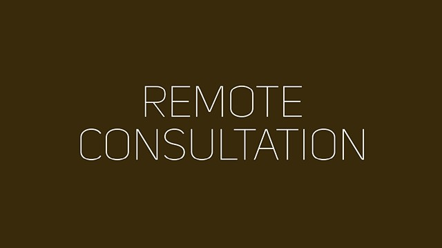 Purchase Remote Consultation $150/hour