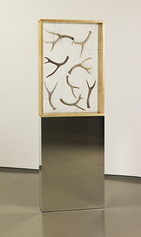 Installation antler box by Marc Swanson The Tenth of Always Richard Gray Gallery Chicago