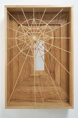"""""""Untitled (Web Box)"""", 2008"""