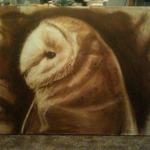 quick owl study