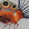 Lab (petridish 12)