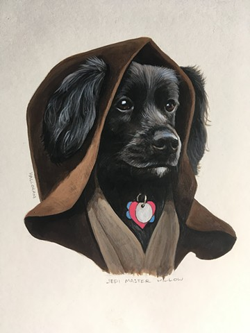 Jedi Willow