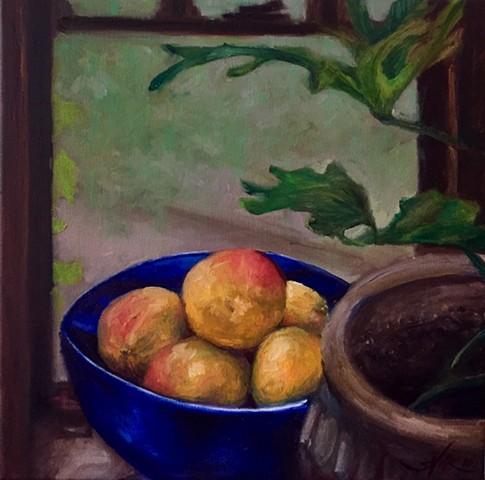 Study of Mangos on a Rainy Day