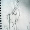 centaur w. irises