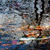 River Reflections Series
