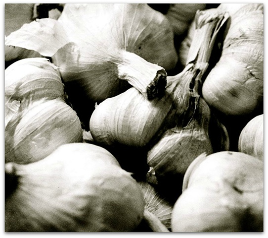 Hulya Kilicaslan photograph of garlic by Hulya Kilicaslan Amsterdam
