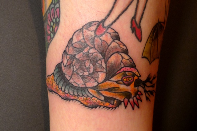 creature for klak