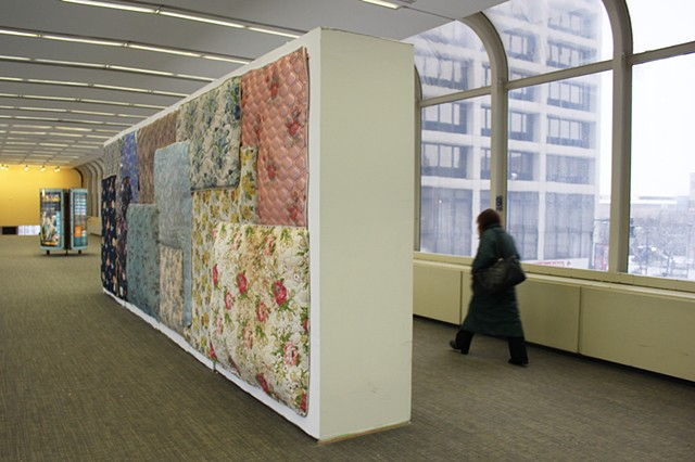 Field in Bloom, installation view