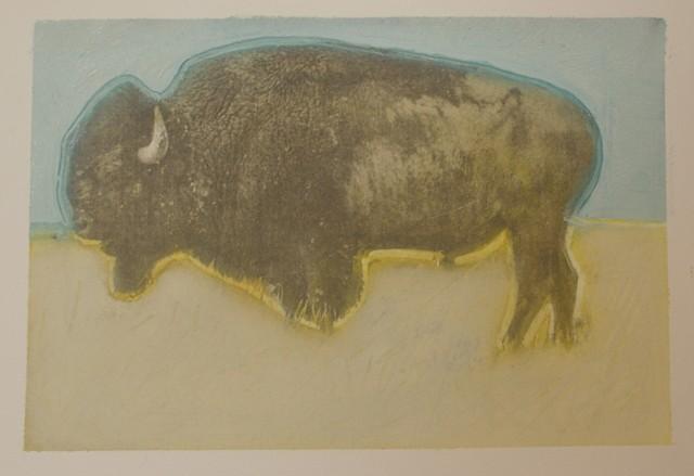 Warhol's Buffalo