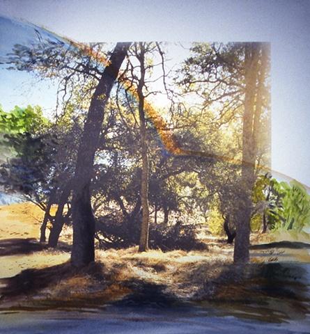 Folsom Foothills #1