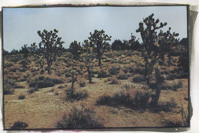 Mojave6_2of3