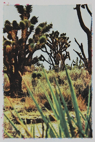 Mojave3_2of3