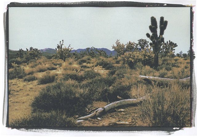 Mojave8_1of3