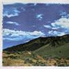 Mojave Gum Prints