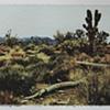 Mojave8_3of3