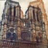 Chartres Gum Prints