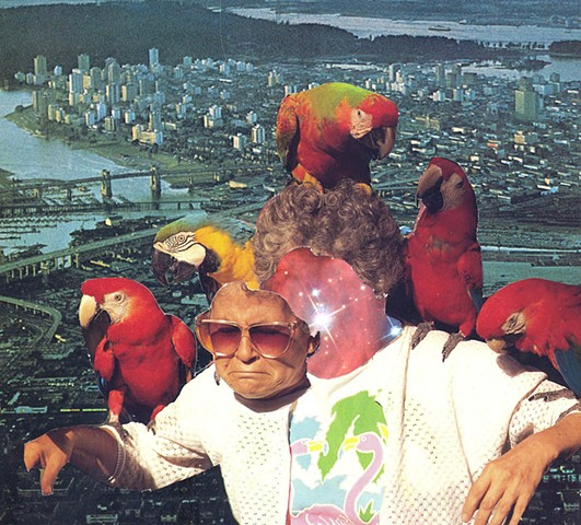 Parrots and Nirvana