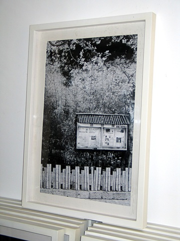 ShanghaiStories0219