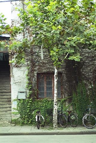 BicycleStories1340