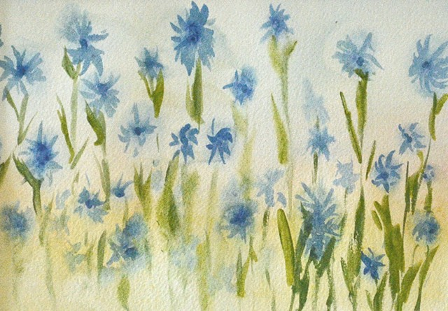 Flowers, watercolour, cornflowers, blue flowers